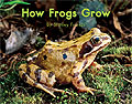 Link to book How Frogs Grow