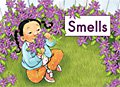 link to book Smells