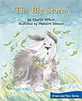 Link to book The Big Storm