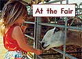 Link to book At the Fair