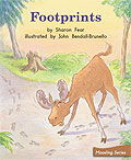 Link to book Footprints
