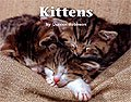 Link to book Kittens