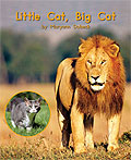 Link to book Little Cat, Big Cat