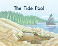 Link to book The Tide Pool