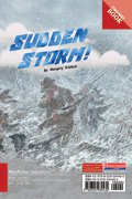 Link to book Sudden Storm