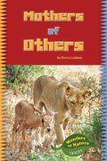 Link to book Mothers of Others