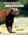 Link to book On the Trail of the Wolverine