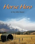 Link to book Horse Hero