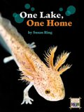 Link to book One Lake One Home