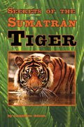 Link to book Secrets of the Sumatran Tiger