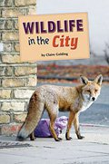 Wildlife in the City