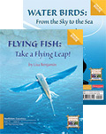 Flying Fish/Water Birds (Two-way)