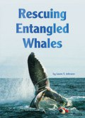 Rescuing Entangled Whales
