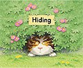 link to book Hiding