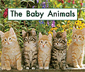 link to book The Baby Animals