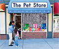 link to book The Pet Store