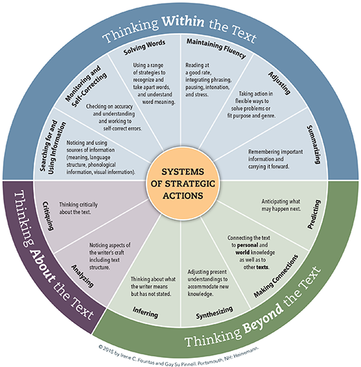 System of Strategic Actions